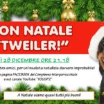 2020.12.28 buon Natale rotweiller